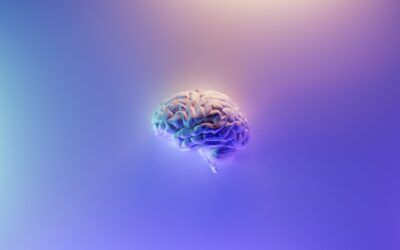 3 Improvements to Your PKM System Just by No Longer Calling Your Digital Brain a Second Brain